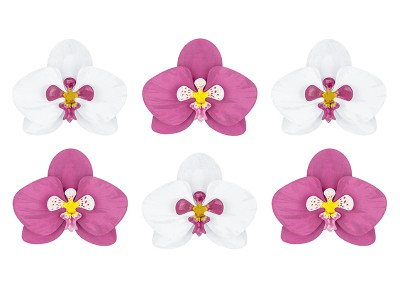 Aloha Paper Decoration Orchids